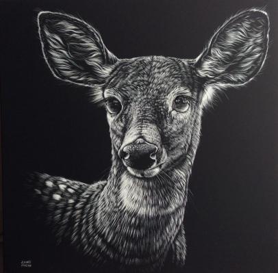 Bambi, Scratchboard 12 x 12 p. Andrée Marcoux, VENDU